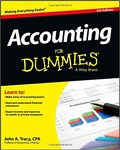 Accounting For Dummies-John A. Tracy